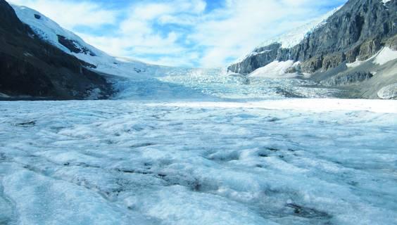 Athabasca-Gletscher © Dejan Romih